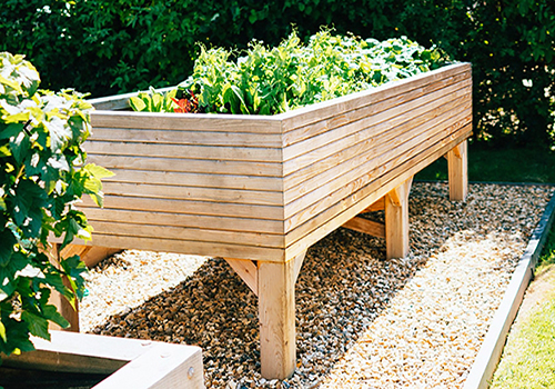 Larch Wooden Planters