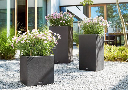 lechuza self watering planters