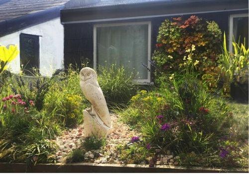 roof garden designer
