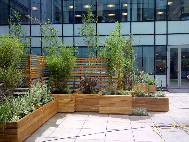 larch planter