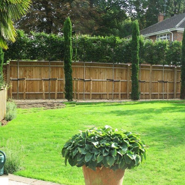 Garden Privacy Screening