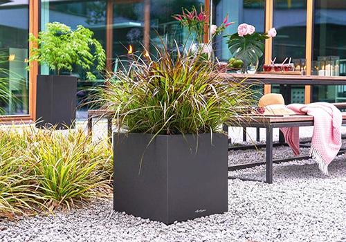 lechuza self watering cube planters