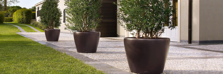 Lechuza seld watering tree planters