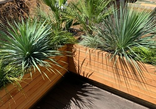 wooden larch planters