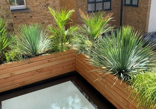 balcony garden design